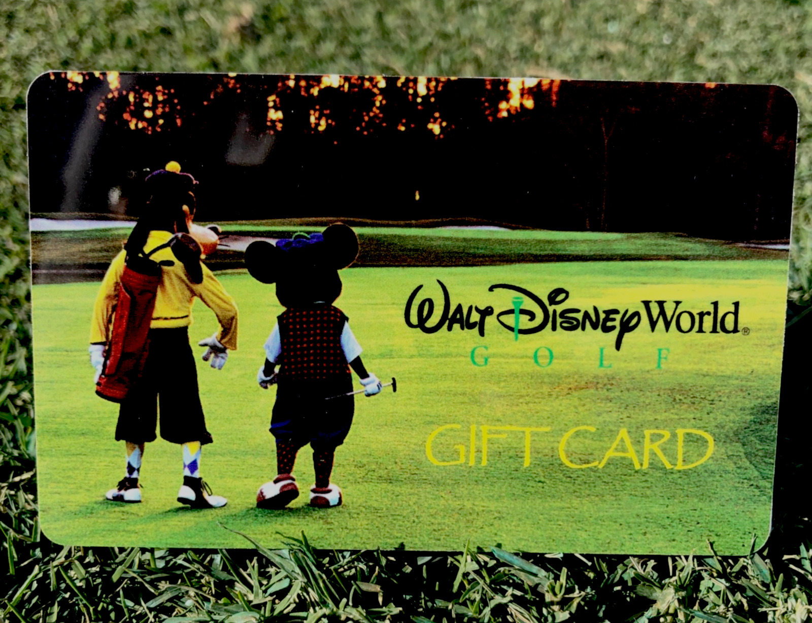 Just In Time For The 2020 Holiday Season! <strong>Walt Disney World</strong>® Golf Gift Cards with Bonus Magic Value!