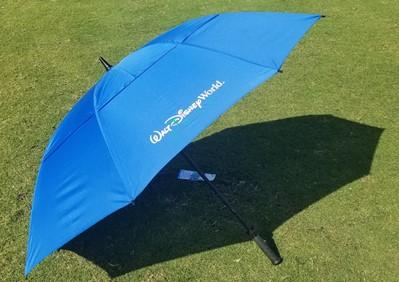 wdw Blue umbrella